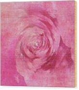 The Pink Lady 5 Wood Print