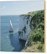 The Pinnacle Stack Of White Chalk From The Cliffs Of The Isle Of Purbeck Dorset England Uk Wood Print by Andy Smy