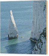The Pinnacle Stack Of White Chalk On The Isle Of Purbeck Dorset England Uk Wood Print by Andy Smy