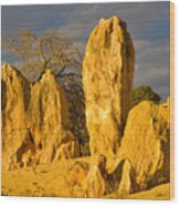 The Pinnacles Nambung National Park Australia Wood Print