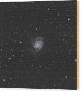 The Pinwheel Galaxy Wood Print