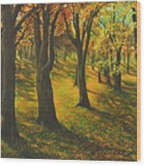 The Plains Of Abraham Wood Print