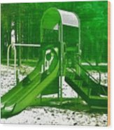 The Playground II - Ocean County Park Wood Print