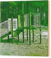 The Playground IIi - Ocean County Park Wood Print