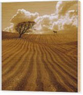 The Ploughed Field Wood Print by Mal Bray