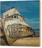 The Point Reyes Beached Wood Print