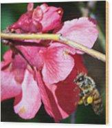 The Pollinator Wood Print