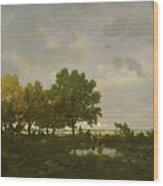 The Pond, La Mare Wood Print