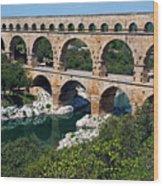 The Pont Du Gard Wood Print