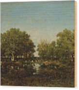 The Pool, Memory Of The Forest Of Chambord Wood Print
