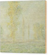 The Prairie In Giverny Wood Print