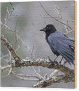The Preening Crow Wood Print
