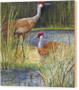 The Protector - Sandhill Cranes Wood Print