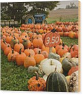 The Pumpkin Farm One Wood Print