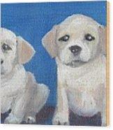 The Pups 2 Wood Print
