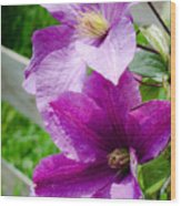 The Purple Flowers Wood Print