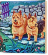 The Purple Gate - Norwich Terrier Wood Print by Lyn Cook