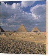 The Pyramids At Giza Wood Print