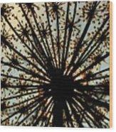 The Queen's Crown Wood Print