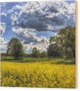 The Quiet Farm Wood Print