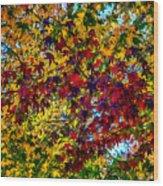 The Rainbow Tree Wood Print