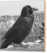 The Raven - Black And White Wood Print