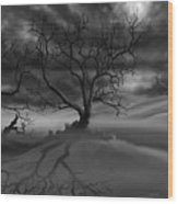 The Raven's Night Wood Print