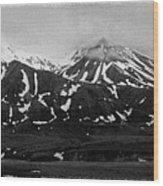 The Real Alaska - Denali Panorama Wood Print