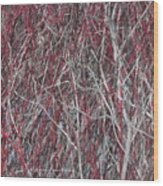 The Red And The Grey Wood Print