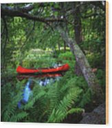 The Red Canoe On The Lake Wood Print
