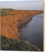 The Red Cliffs Of Prince Edward Island Wood Print