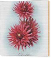 The Red Dahlia Wood Print