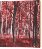 The Red Forest Wood Print