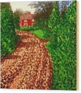 The Red House In Finland Wood Print