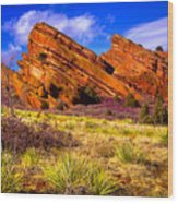 The Red Rock Park Vi Wood Print