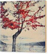 The Red Tree At Okanagan Lake Wood Print