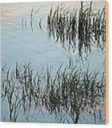 The Reeds Wood Print