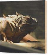 The Reptile World Wood Print