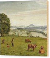 The Rhine Valley Near Sackingen Wood Print