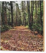 The Richness Of Autumn Treasures Wood Print