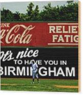 The Rickwood Classic - Birmingham Alabama Wood Print