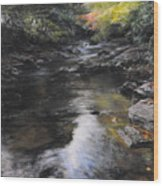The River At Lady Bagots Wood Print