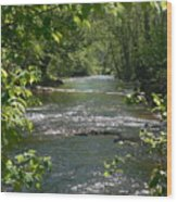 The River In Spring Wood Print