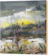 The River Nistru IIi Wood Print