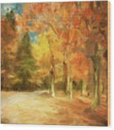 The Road Home Wood Print