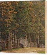A Road Less Travelled Wood Print