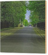 The Road On A Border Of Royal Park Wood Print