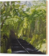 The Road Through Glenastar Wood Print