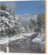 The Road Through Winter Wood Print