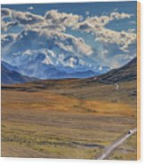 The Road To Denali Wood Print